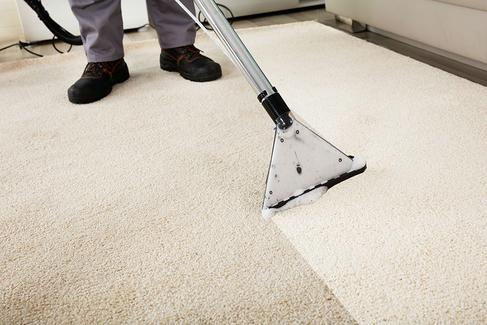 Carpet Cleaners Swansea